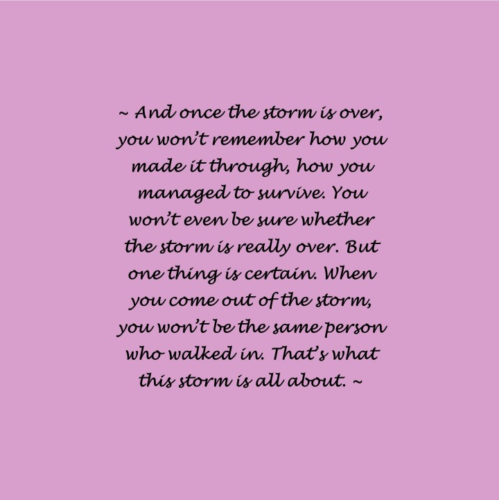 quote about storm and changing